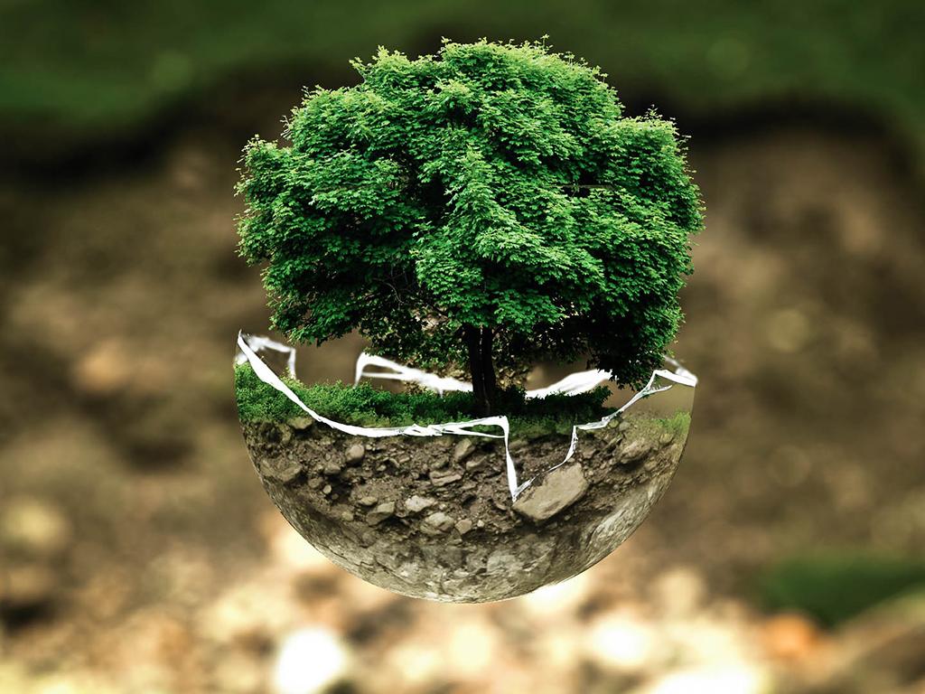 environmental-protection-683437.jpg
