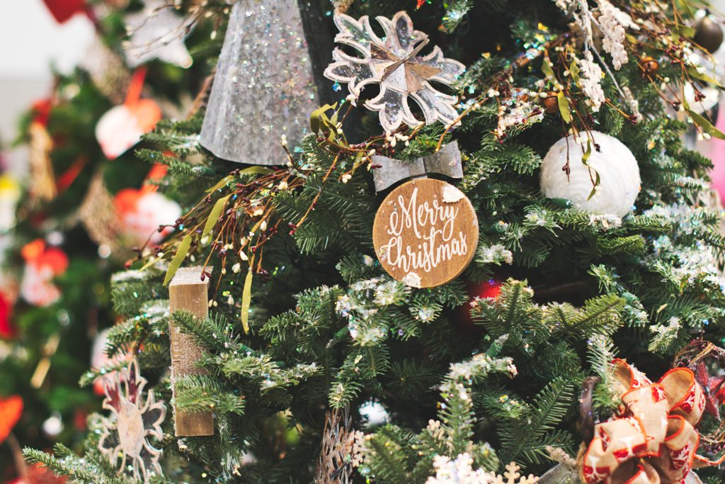 close-up-photo-of-christmas-tree-1692861.jpg