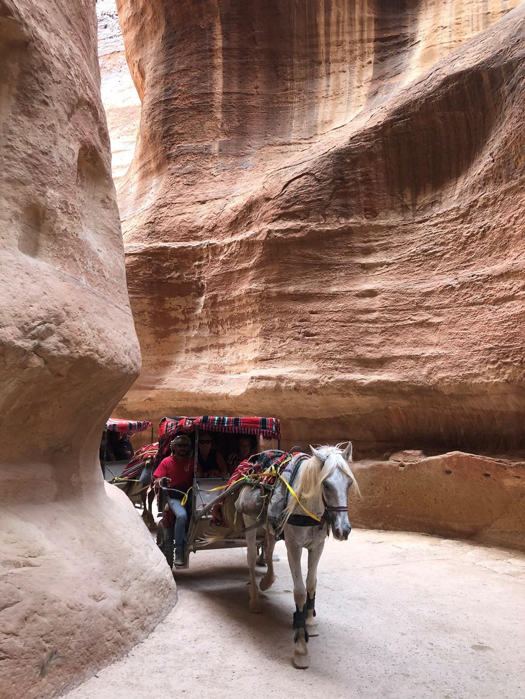 Potovanje_v_Jordanijo_-_Travelling_to_Jordan_106.JPG