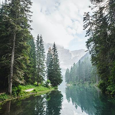Trajnostni turizem v evropskih gozdovih