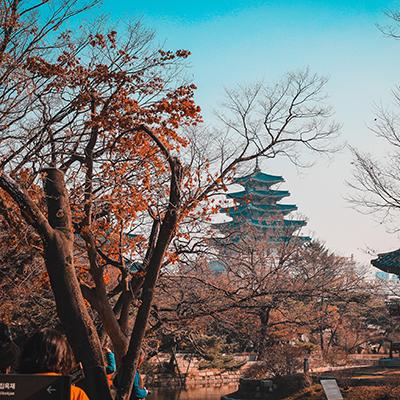 Potovanje v Južno Korejo